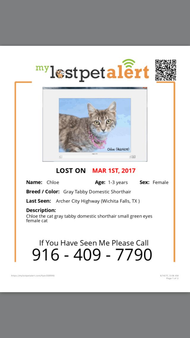How to Make an Effective Missing Pet Poster (with Pictures)