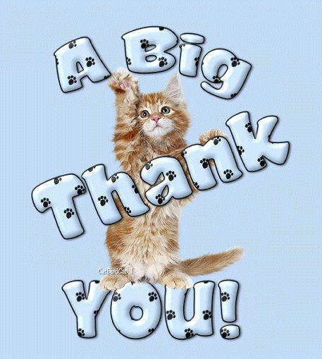 Many Thanks! - MeoowzResQ