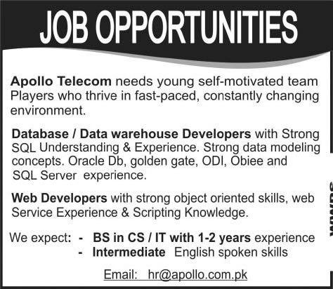 Database / Data Warehouse Developer & Web Developer Jobs in ...