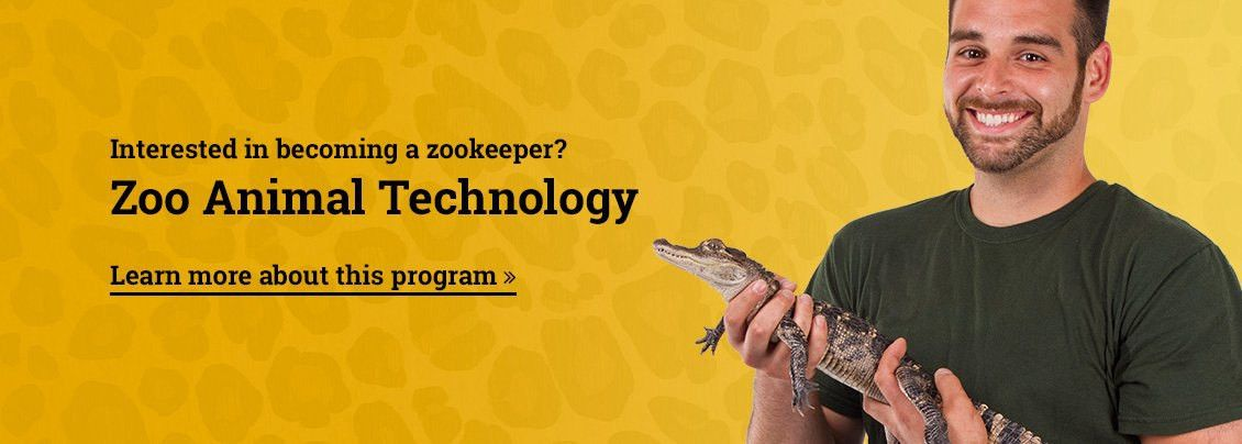 Santa Fe College Teaching Zoo | Gainesville Florida