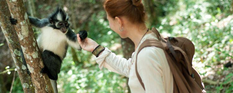 How To Become A Zoologist   UCAS Progress   UCAS