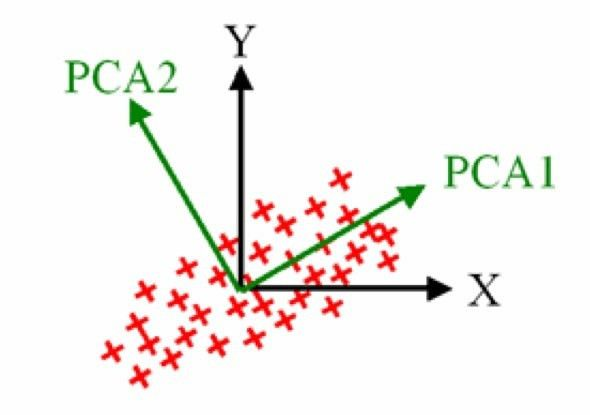 What Is Principal Component Analysis and How Many Variables Can Be ...
