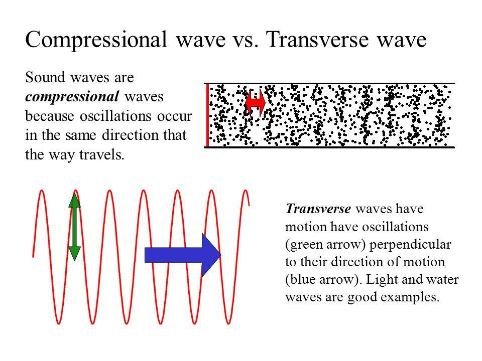 Introduction to Sound Waves - ppt video online download