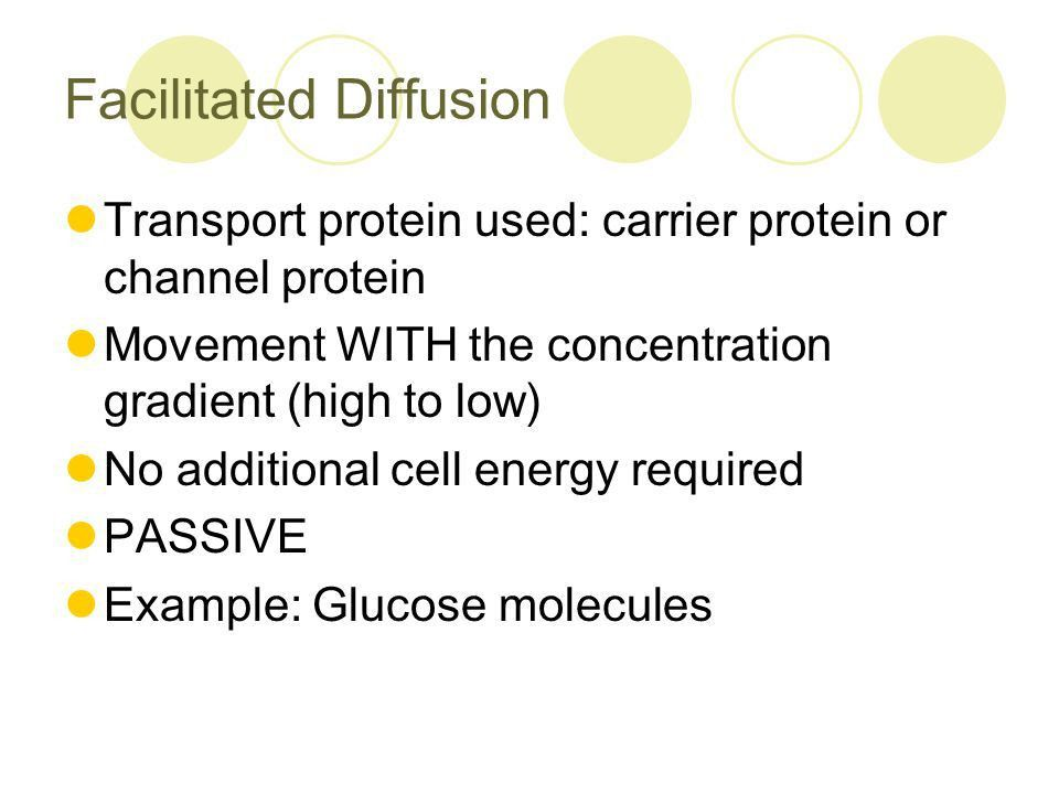 CELL MEMBRANE AND CELL TRANSPORT NOTES - ppt download