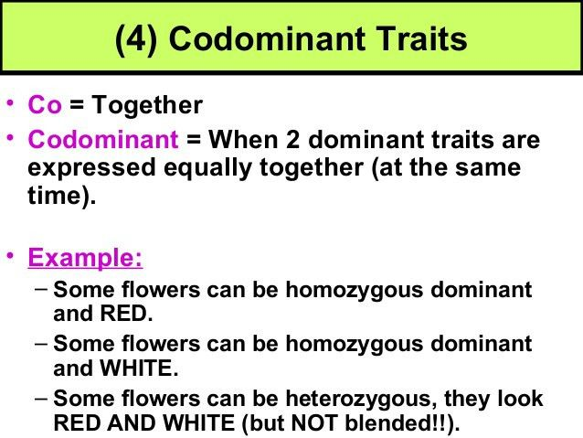 Biology Unit 5 Notes: Non-Mendelian Traits