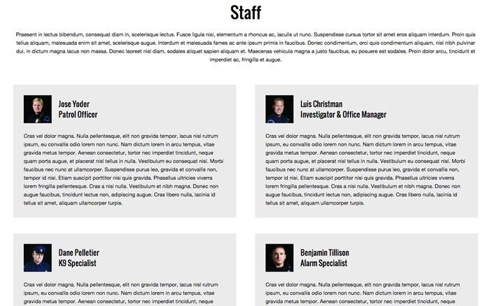Security Company Wordpress Theme - Template For Security Company ...