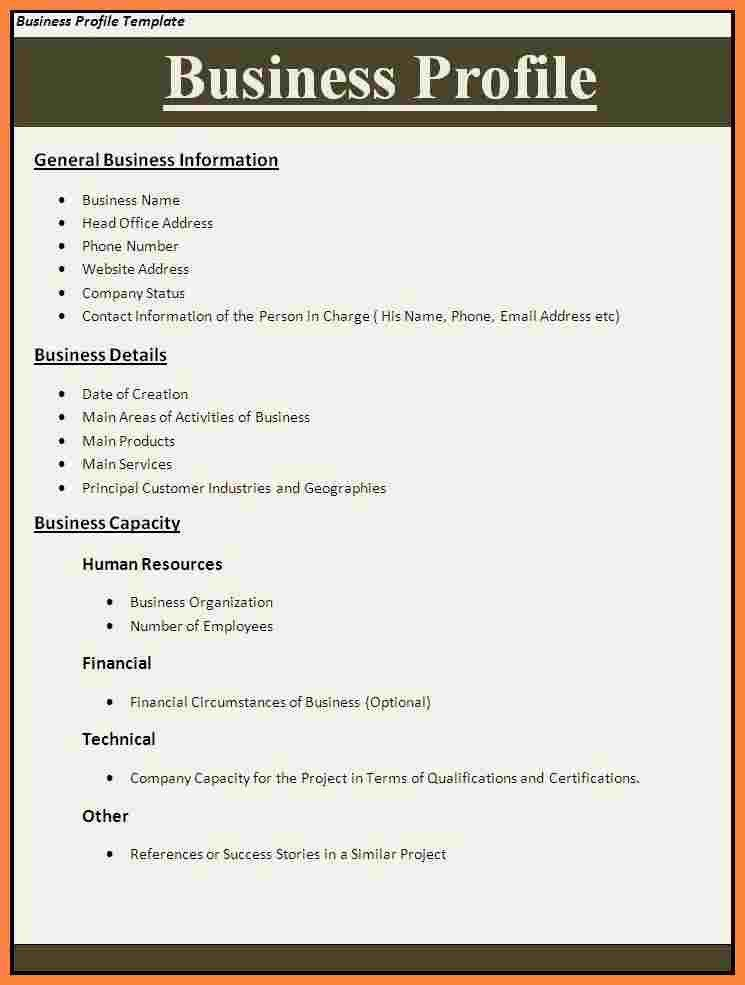 6+ business profile sample doc | Bussines Proposal 2017