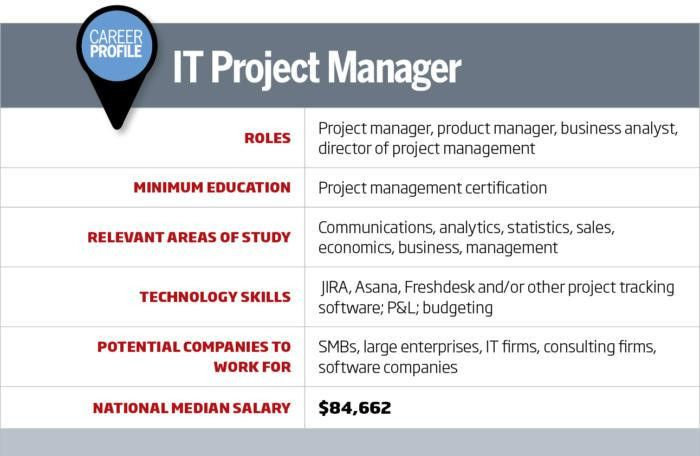 IT Career Roadmap: IT project manager | CIO