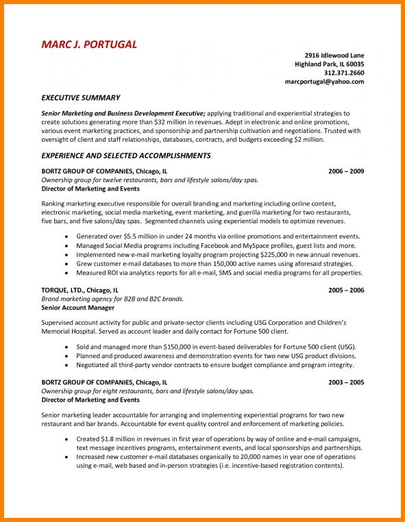 9+ executive summary sample | resume reference