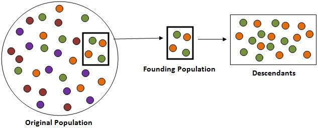1) Changes in Population: Genetic Drift - Evolution