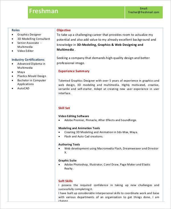 29+ Resume Examples | Free & Premium Templates