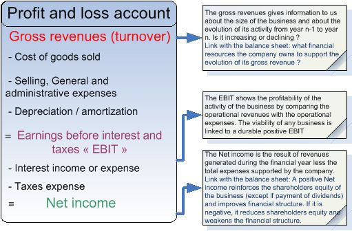 Analyze the Profit and Loss account - Assess your customers