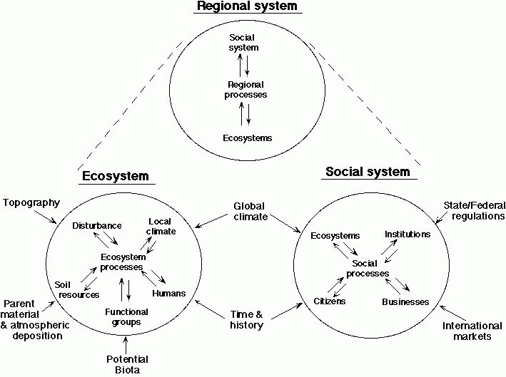 Conservation Ecology: Sustainable Development of the Boreal Forest ...