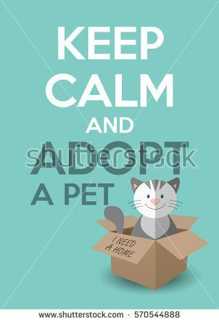 Pet Adoption Stock Images, Royalty-Free Images & Vectors ...