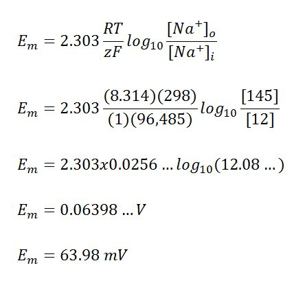 Nernst Equation - The School of Biomedical Sciences Wiki