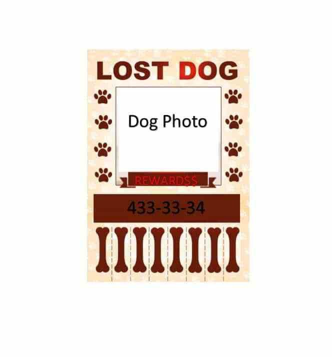 Lost Template. customizable design templates for lost animal ...