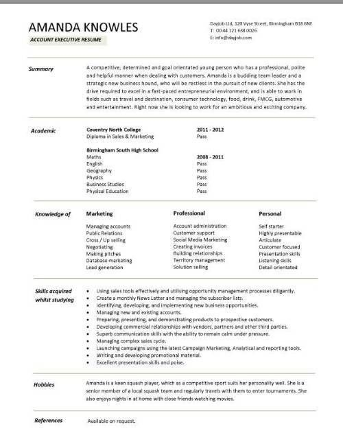 Sales Executive CV template example, marketing executive, revenue ...