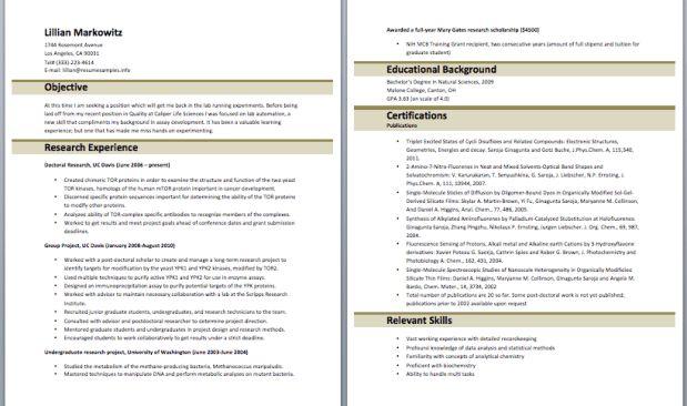 3. medium size of curriculum vitaeformat of cv for teacher chart ...