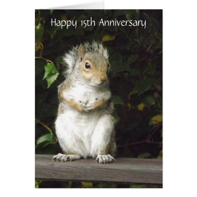 Squirrel - Anniversary Card Template | Zazzle.com