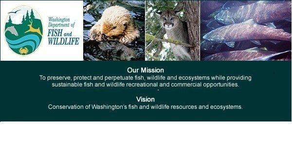 Job: Fish and Wildlife Biologist 2, WDFW (Yakima, WA) |