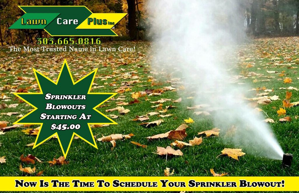 Lawn Care Plus - The Most Trusted Name in Colorado Lawn Care