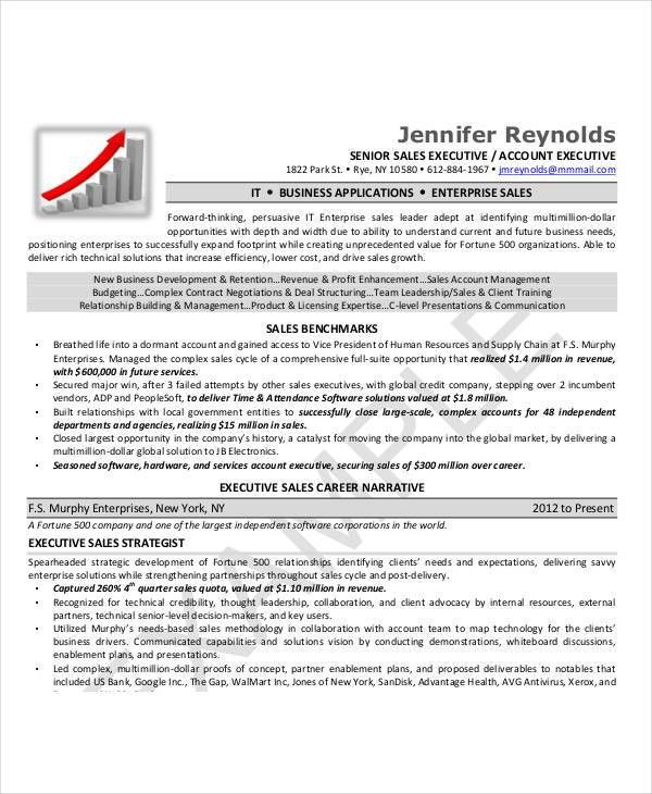 Executive Resume Examples - 24+ Free Word, PDF Documents Download ...