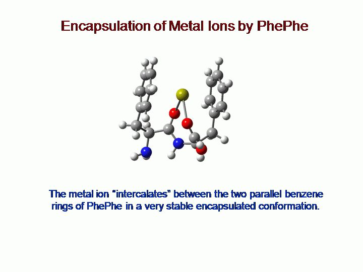 HOW CATION-PI INTERACTIONS ENHANCE AND STRUCTURE THE BINDING OF ...