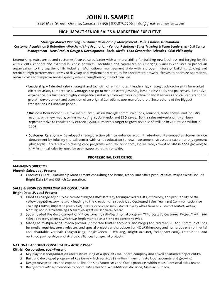 combination resume example executive director performing arts p1 ...