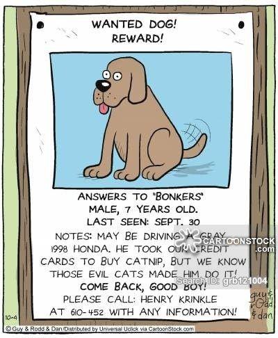 Missing Pet Cartoons and Comics - funny pictures from CartoonStock