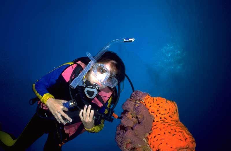 Marine Biologist on emaze