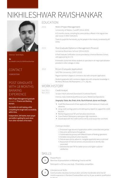 It Analyst Resume samples - VisualCV resume samples database