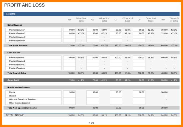 9+ profit and loss statement template   Case Statement 2017