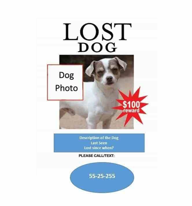 Missing Reward Poster Template | Blank.csat.co