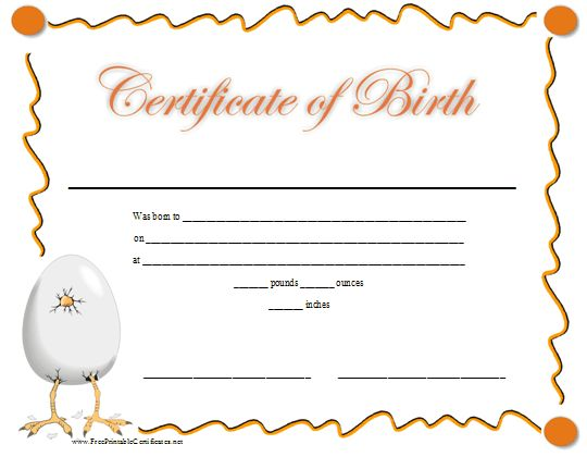 A fun printable birth certificate with a graphic of a baby chick's ...