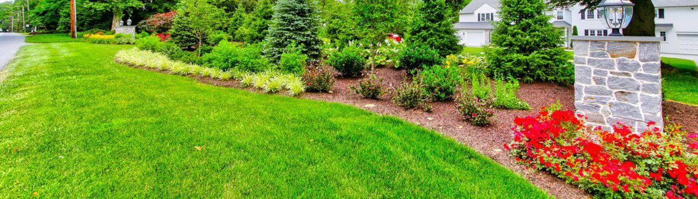 Lawn Care Services - Clean Energy Maintenance, Inc.