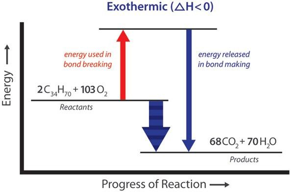 Exothermic, Endothermic, & Chemical Change | Energy Foundations ...
