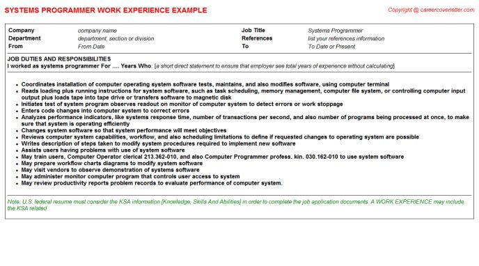 Systems Programmer CV Work Experience