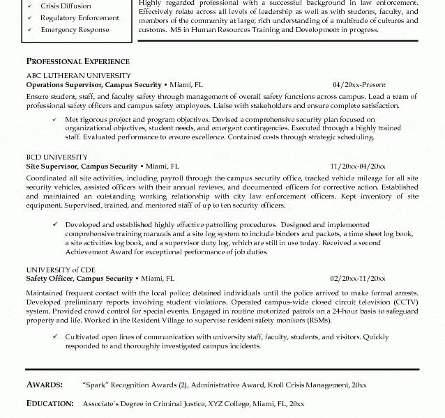 Excellent Design Security Guard Resume Examples 15 Security ...
