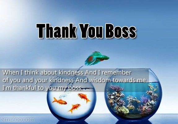 Thank You Messages For Boss With Images