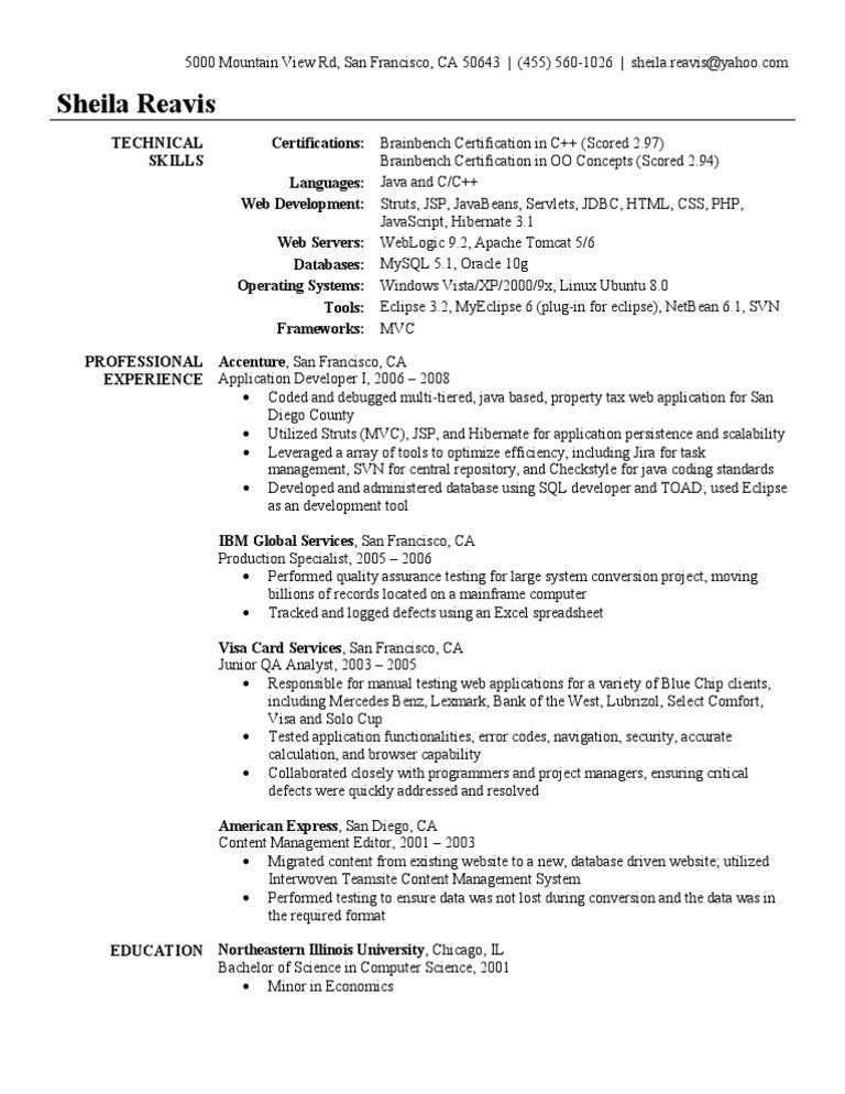 Application Developer Resume Sample