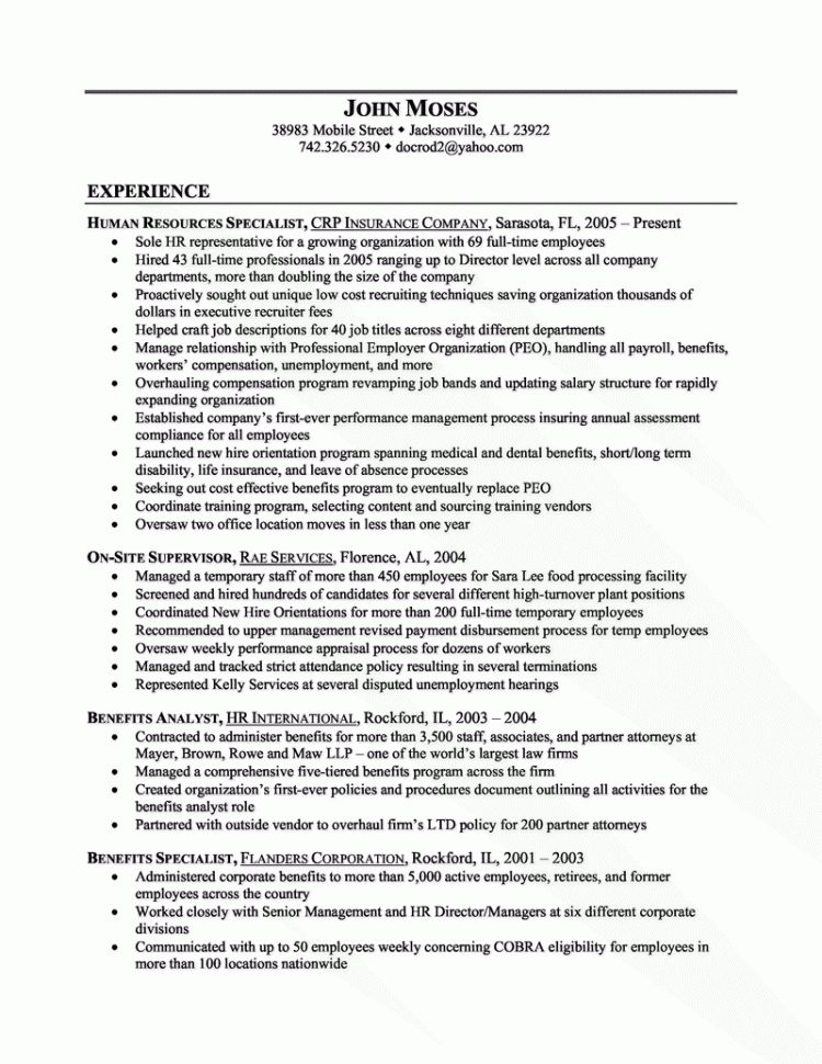 professional entry level recruiter templates to showcase your ...