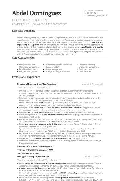 Director Of Engineering Resume samples - VisualCV resume samples ...