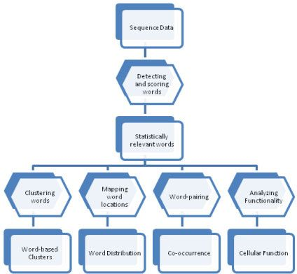 Process Flowchart. Methodology flow applied for the dis | Open-i