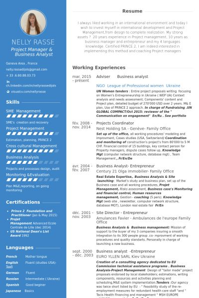 Analyst Resume samples - VisualCV resume samples database