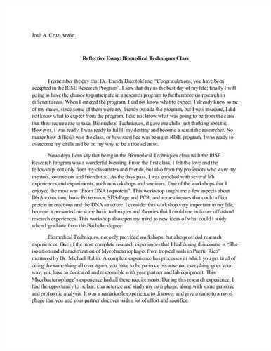essay high school application essay examples high school entrance ...