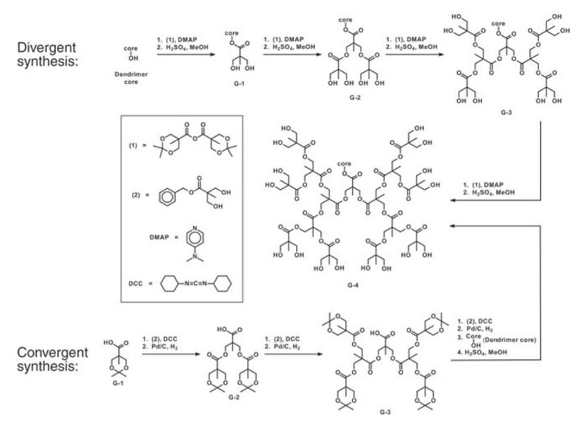 Synthesis of a polyester dendron.An example of a typical dendrimer...