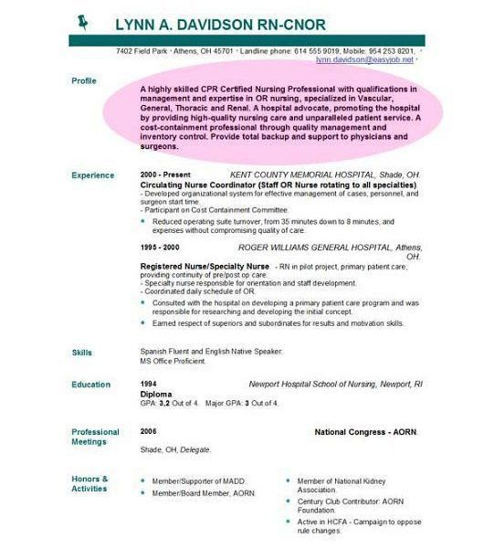 Download Whats A Good Resume Objective | haadyaooverbayresort.com