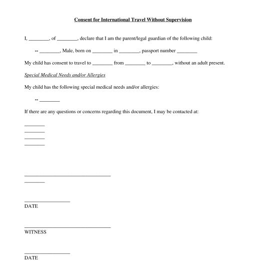 Travel Consent Form - Sample, Template - Word & PDF
