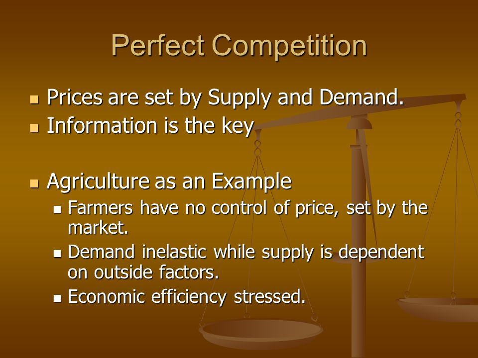 Economics Chapter 9 Competition and Monopolies. Perfect ...