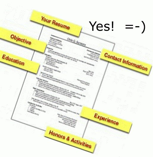 The elements of a professional and accurate resume - Resume Cv